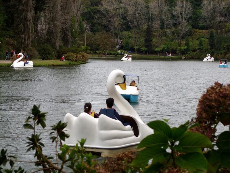 Lago Negro1