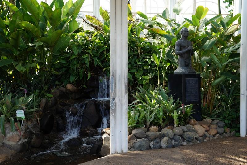 Fonte estufa jardim botânico