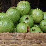 Goiaba, uma fruta super poderosa